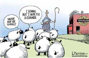 sheep_cartoon