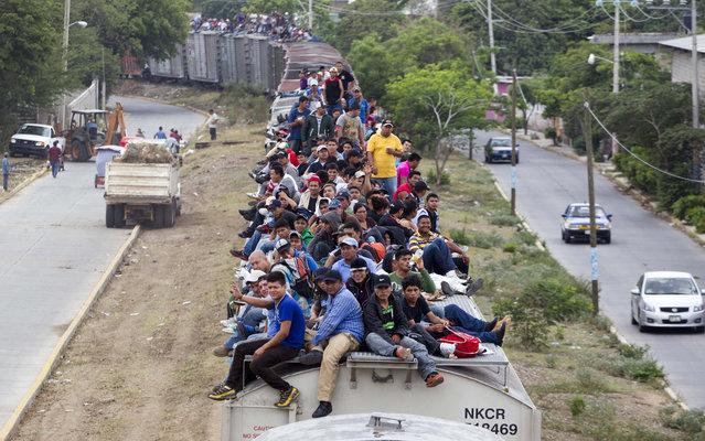 Migrants Heading Towards Us Mexico Border 11 K Pinckney